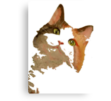 I'm All Ears - Cute Calico Cat Portrait Canvas Print