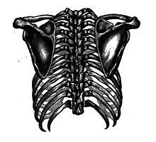 Them Bones Them Bones by Katelizabethan
