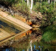Spillway to Reflection by Bev Woodman
