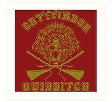 Gryffindor Quidditch Art Print