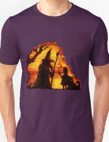 An Adventure?  T-Shirt