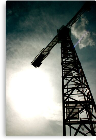 The Crane by Georg Stadler