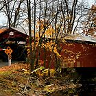 Rishel Covered Bridge by DJ Florek