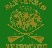 Slytherin quidditch by Gapan