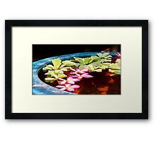 Thai Flowers Framed Print
