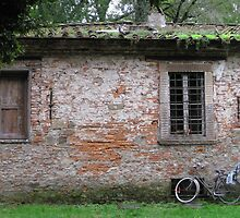 Lucca wall by restlessgypsy