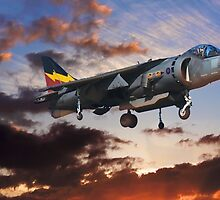 RAF Harrier GR9 by yeamanphoto