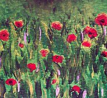 Poppy Field by jbguess