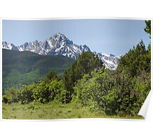 Mt. Sneffels in June Poster