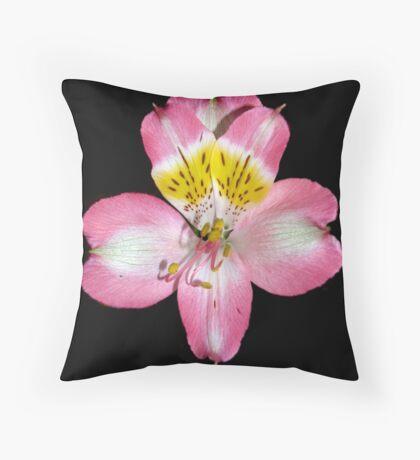 Alstromeria Throw Pillow