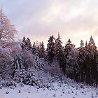 Taunus sunrise by heinrich