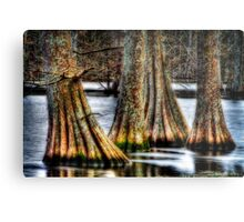 Cypress Quad Metal Print