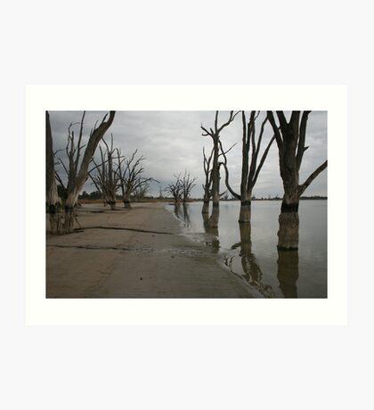 Lake Bonney,Barmera Art Print