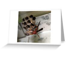 Wasp Do YOU Want?  Greeting Card