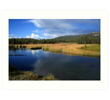 Tranquil Yellowstone Art Print