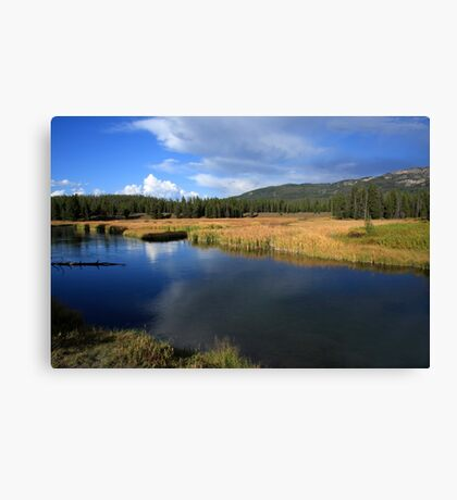 Tranquil Yellowstone Canvas Print