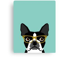 Darby - Boston Terrier pet design with hipster glasses in bold and modern colors for pet lovers Canvas Print