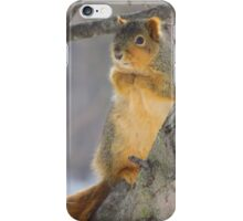 Sitting in the Apple Tree iPhone Case/Skin