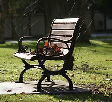 Autumn Rest by nizzadotcom