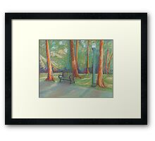 Rest Stop on the Ocmulgee Framed Print