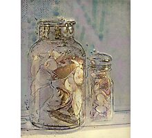 The Shell Jar Photographic Print