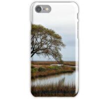 Estuary iPhone Case/Skin