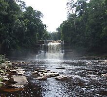 The majestic Maliau Falls - Maliau Basin - Borneo by David Meyer