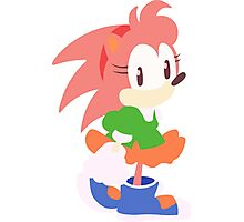 Amy Rose The Hedgehog Photographic Print
