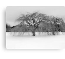Winter's Coming Canvas Print