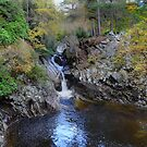 Falls Of Bruar by Donald  Stewart