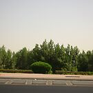 Through Driving by Areej27Jaafar