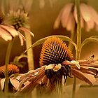 *Vintage Floral* by DeeZ (D L Honeycutt)