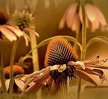 Vintage Floral by Darlene Lankford Honeycutt