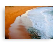 A Walk On The Wild Side - Sydney Beaches - The HDR Experience Canvas Print