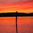 Sunset Pole by PPV247