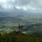 view from the Pyramid, Gordonvale (towards Cairns) by Chris Cohen