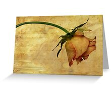 ...the end of love. Greeting Card