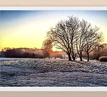 HDR Frosty Morning by Peter Barrett