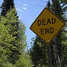 Dead End by Dylan & Sarah Mazziotti