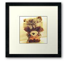 Rocket Raccoon Framed Print