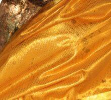Golden Buddha statue Sticker
