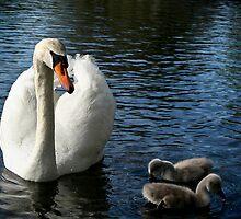Maternal Instinct by JaneTara Oliver