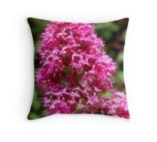 Heart of a flower, #17 Big Sur (softened) Throw Pillow