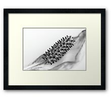Peace LiLLy  - JUSTART ©  Framed Print