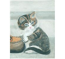 Cat and shoe - Oil Pastels Photographic Print