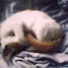 "Sleeping by "" RiSH """