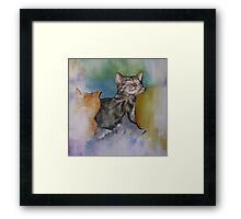 A Cuddle of Cats! Framed Print