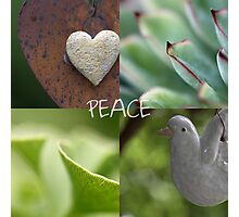 Peace  - JUSTART ©  Photographic Print