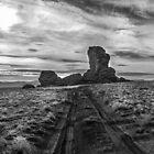 Pyramid Lake Tufa by Jeffrey  Sinnock