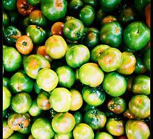 Tomatos by thecarol